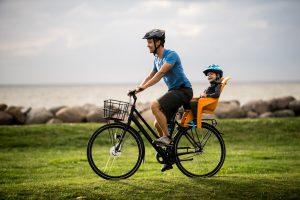 pol_pl_Fotelik-rowerowy-THULE-RideAlong-Lite-szary-3283_1