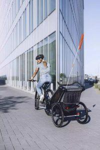 pol_pl_Przyczepka-rowerowa-dla-dziecka-THULE-Chariot-Lite-1-Agave-Black-9485_3